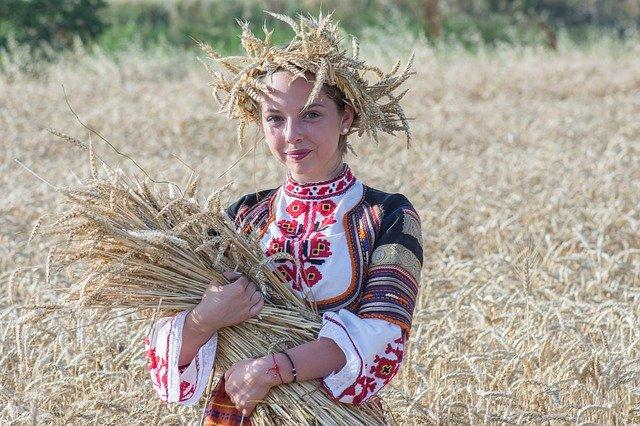 harvest-2460135_640